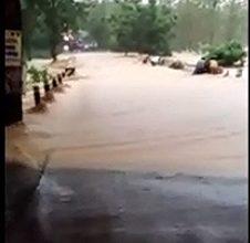Photo of BPBD Grobogan Sebut Tak Ada Jembatan Ambrol, Hoax..!!